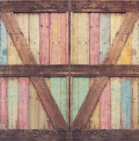 Photography Backdrop Distressed Wood Barn Door by ...