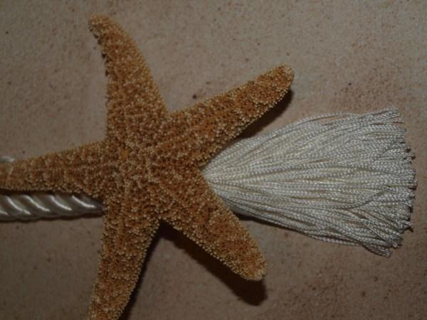 Coastal Sugar Starfish Curtain Tie Backs 2 by