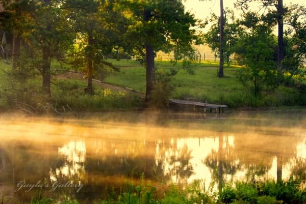 Morning Fog Landscape Country Pond