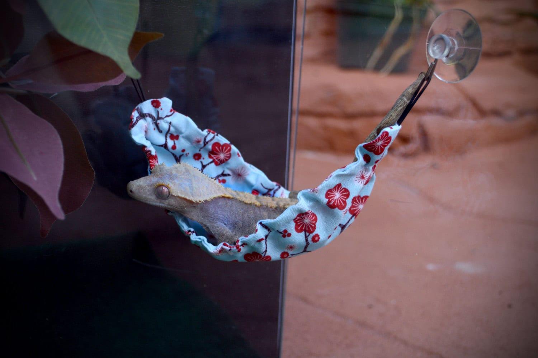Gecko Lizard Hammock By Littleartmonsterr On Etsy