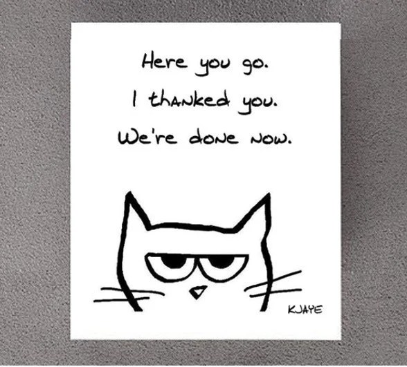 Angry Cat Begrudgingly Says Thank You Funny Thank You Card