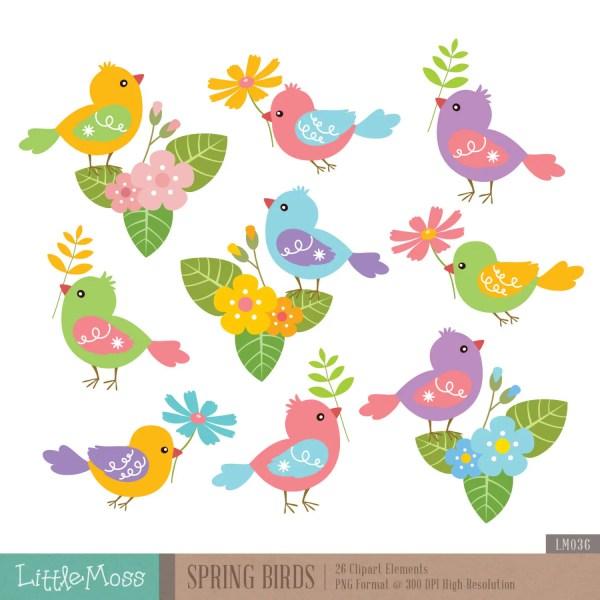 spring birds digital clipart bird