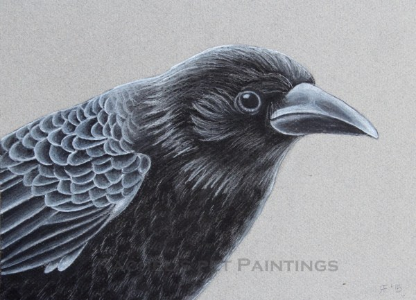Crow Art Print Charcoal Drawing Black