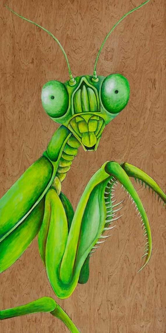 praying mantis art print insect