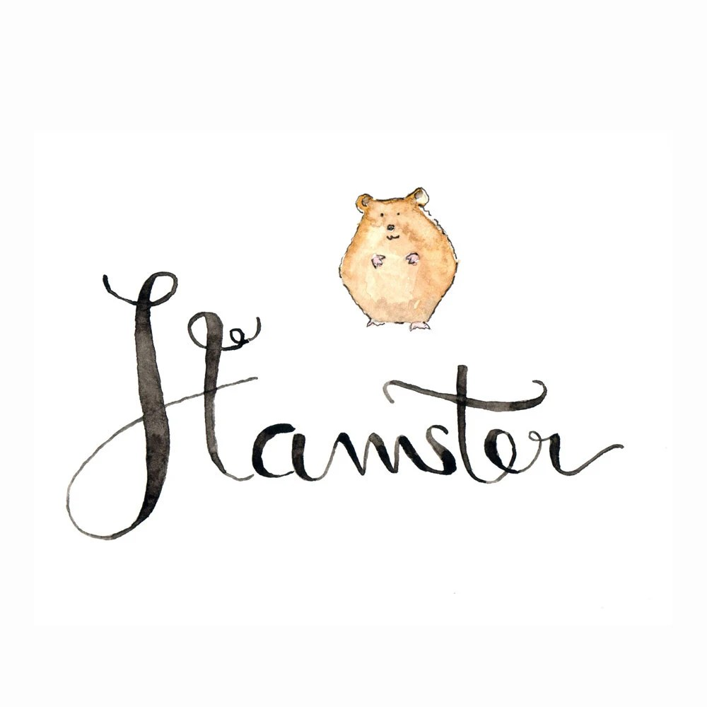 H like Hamster Learn english with fun: What animal name
