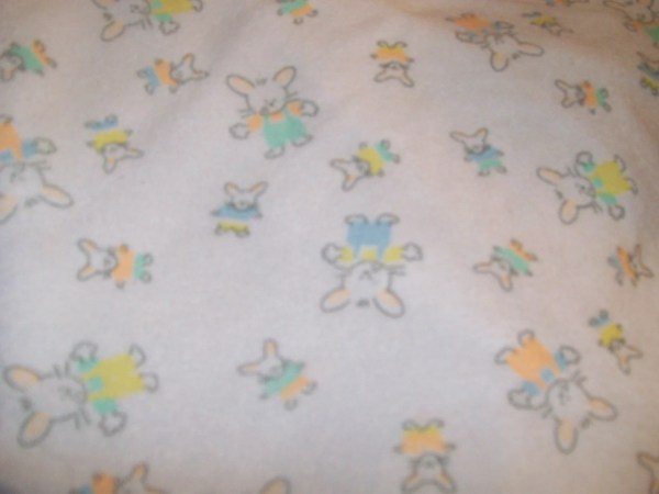 Printed Terry Cloth Cotton Fabric Colorful Bunnies 100