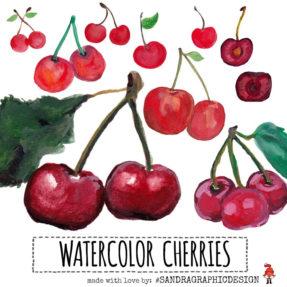 hight resolution of cherry clip art with hand painted watercolor cherries delicious fruit clip art images 813