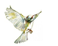 Original Watercolor Painting Sparrow Art Print Flying ...