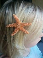starfish hair clip