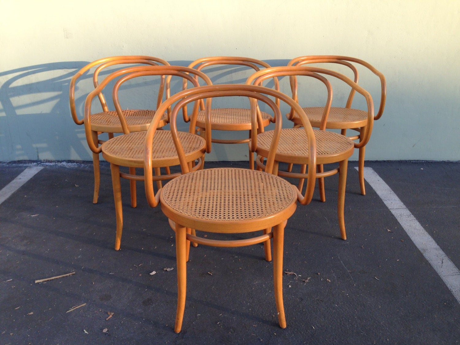 Bent Wood Chairs 6 Stendig Thonet Bentwood Chairs No B9 Dining Chair Wood Cane