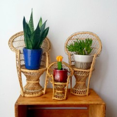 Chair Planter Stand Pier One Rocking Vintage Mini Wicker Peacock Plant