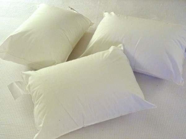 12x16 Pillow Insert Allergenic Travel