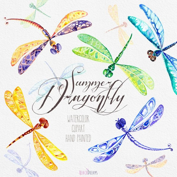 watercolor dragonfly hand painted