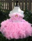 Pink Feather Tutu Dress