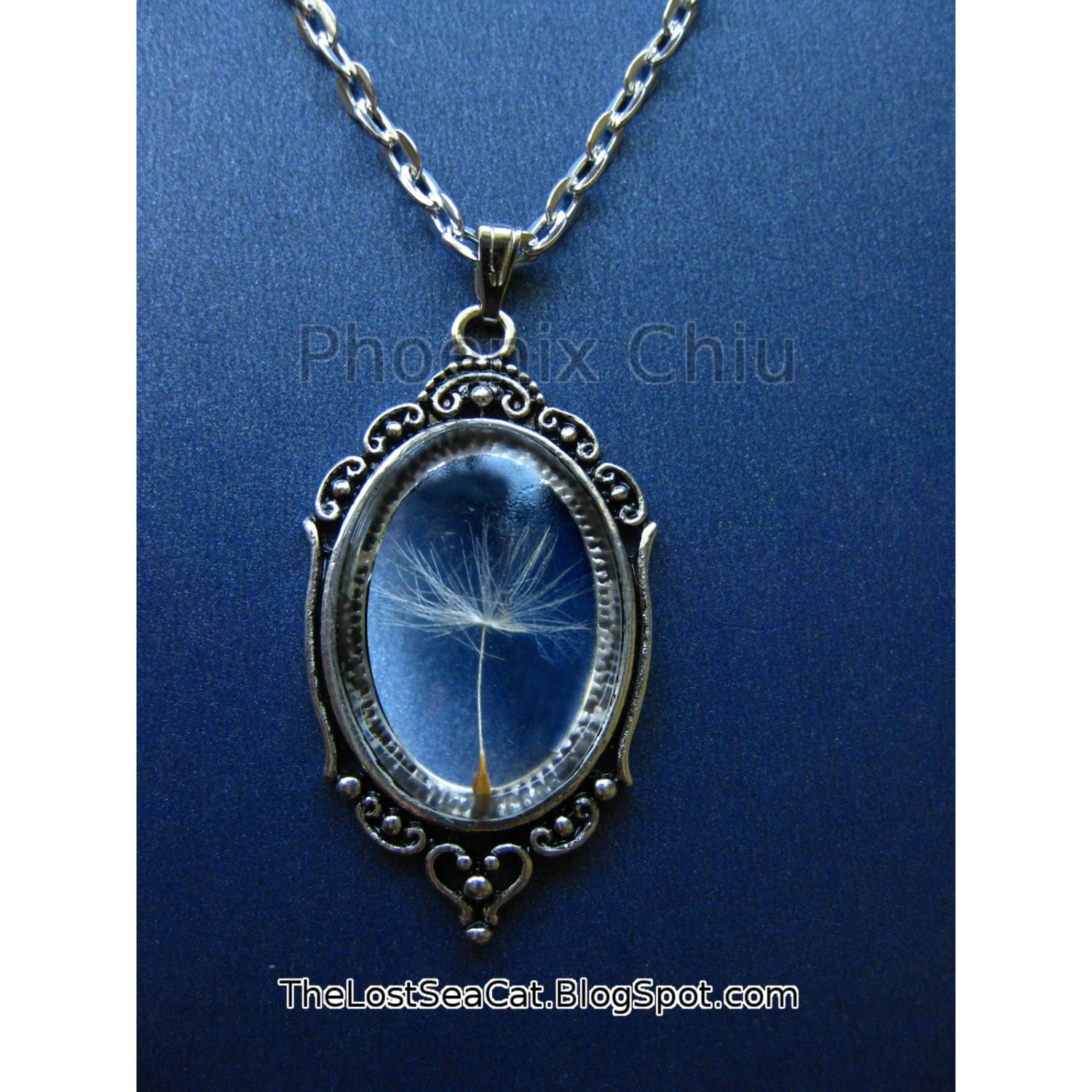 Real Dandelion Seed Jewelry Dandelion Necklace Make A Wish