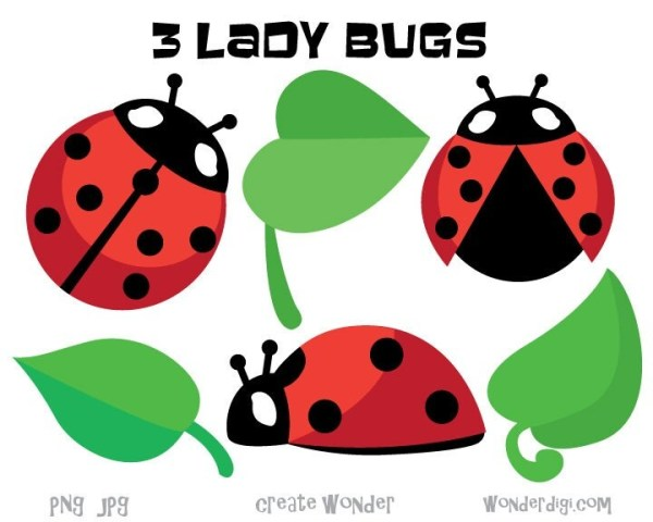 ladybug clipart bugs leaves