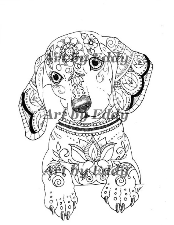 art of dachshund coloring book volume no. 1 physical
