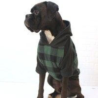 Dog Hoodie Large Dog Sweater Clothing for Girl/Boy in Green