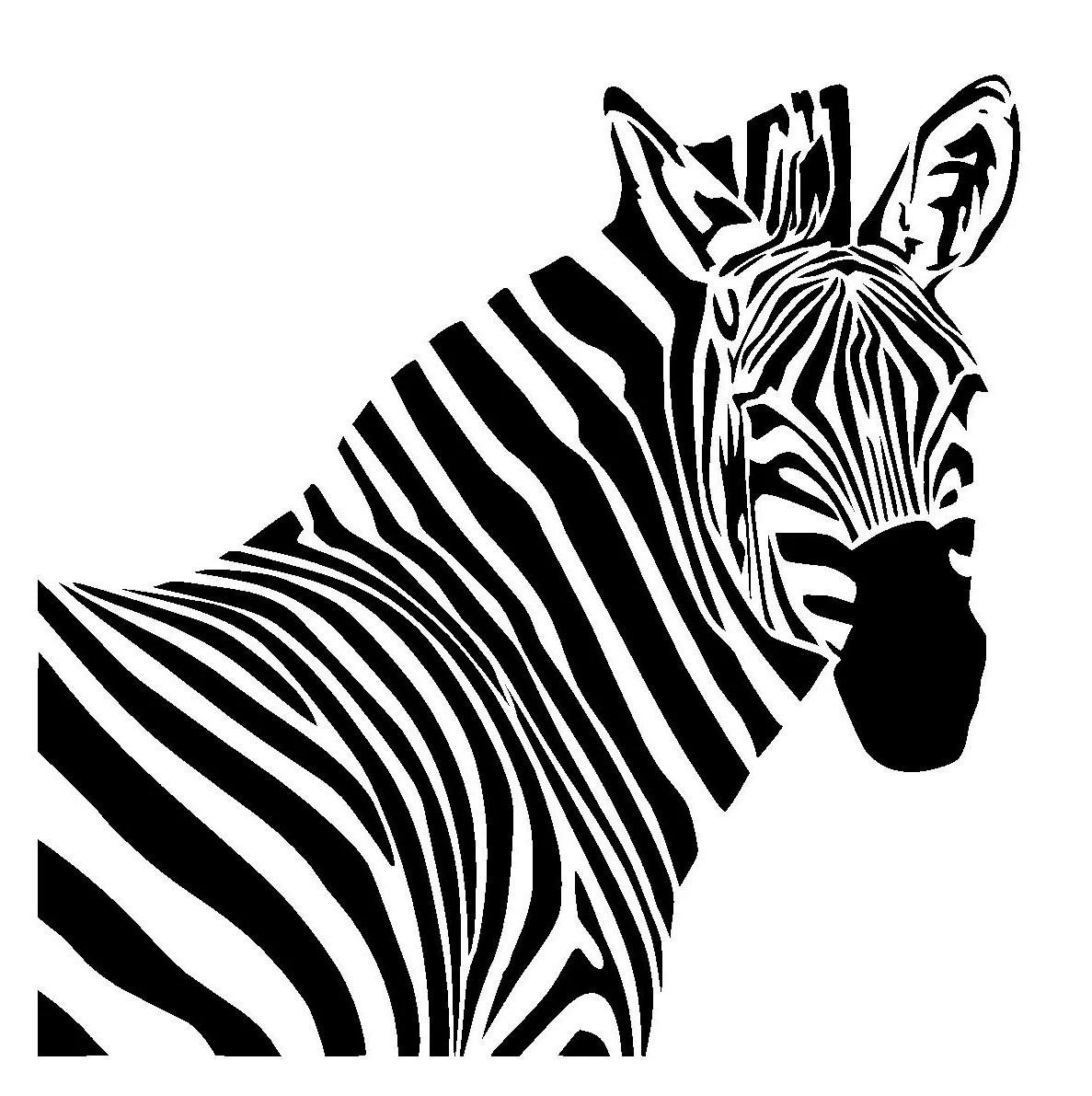 6 6 Zebra Stencil 1