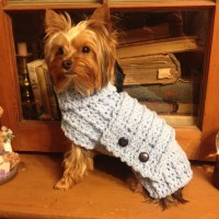 Yorkie / Small Dog Coat / Sweater Extra Small