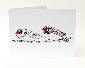 Bird card. Zebra finch. M...