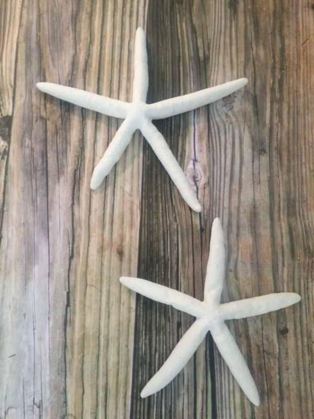 Starfish Wall Hanging Home Design Ideas