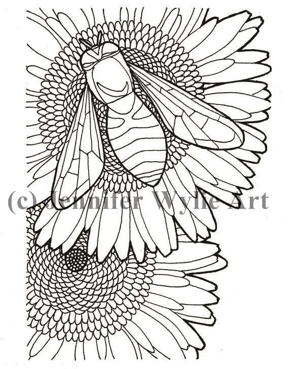 Bee Flower Adult Coloring page Colouring Page Coloring Book