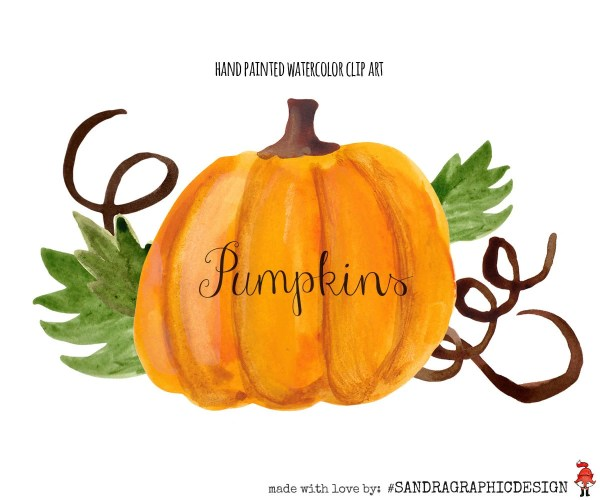 clip art pumpkin hand painted