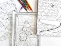 Vendita 3 libro Harry Potter adulto da colorare notebook