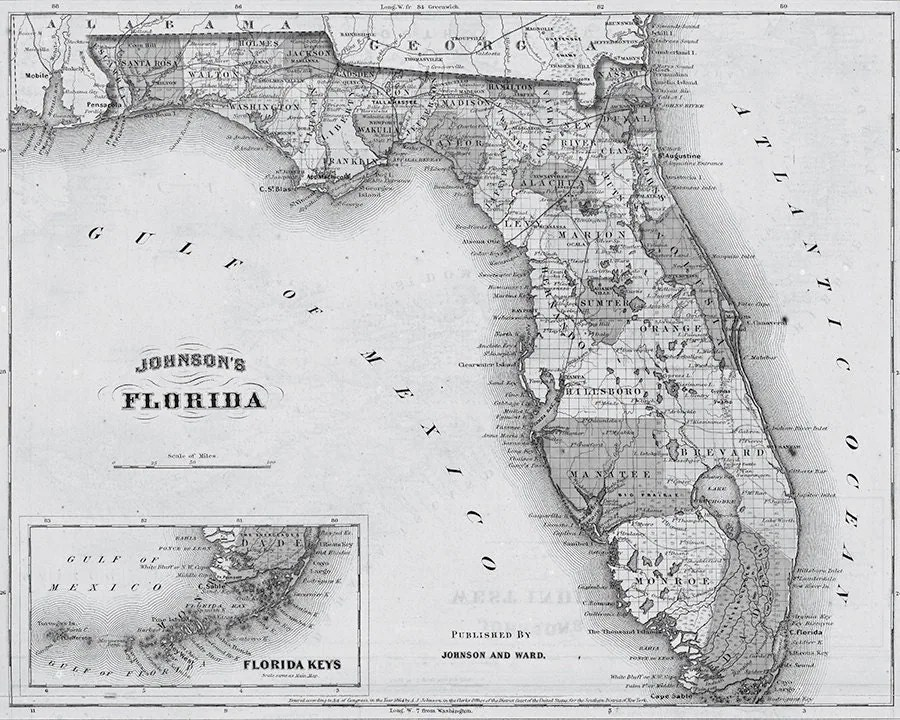 19th Century Map of Florida Florida Map Print by