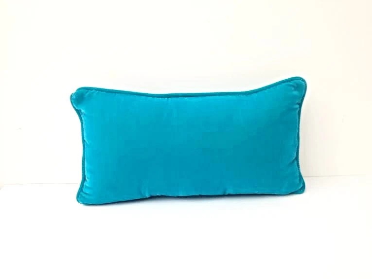 Silk Velvet Turquoise Throw Pillow Small Pillow 18 by