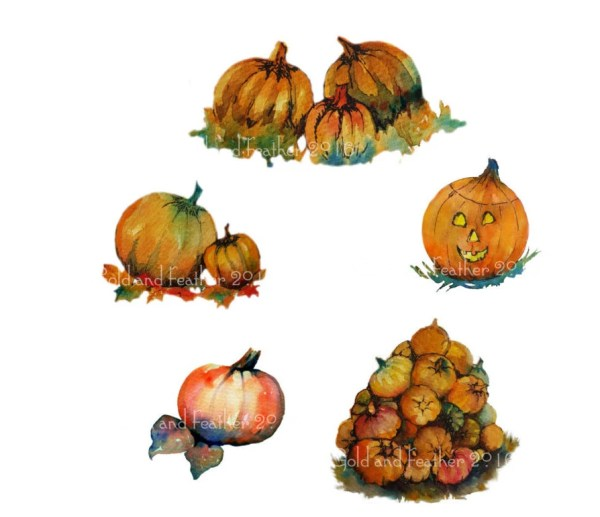 pumpkin clip art five hand painted