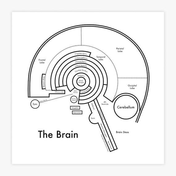 Brain map 8x8