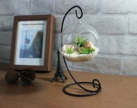 Home Decoration Office Desk Decor Terrarium kit with quartz
