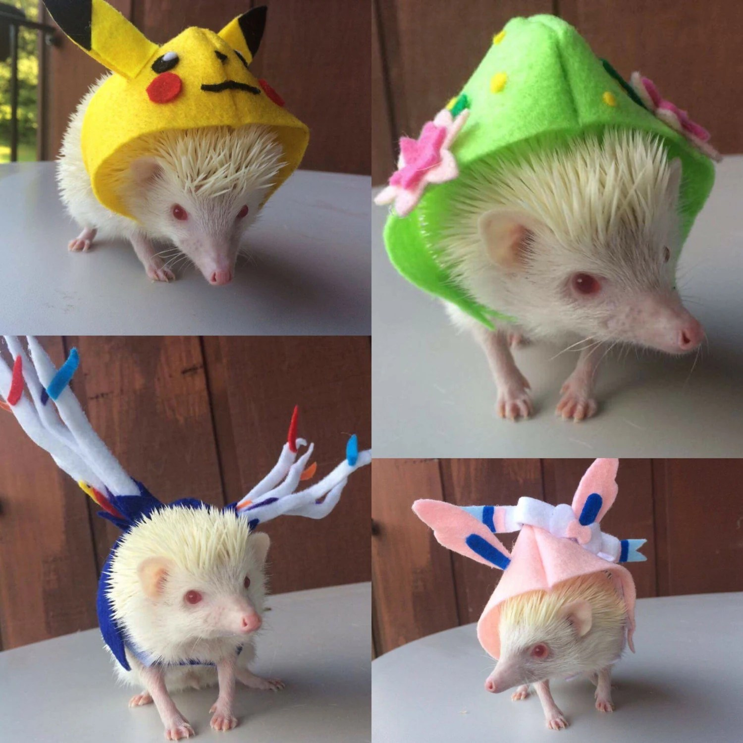 Hedgehog costume