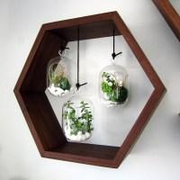 Hexagon Hanging Terrarium Garden Black Walnut Wall Mounted