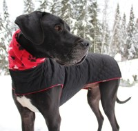 XL Dog Jacket w/ Hoodie / Great Dane Jacket/ XXL Handmade Dog