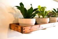 Wall Mounted Indoor Planter by PinOakProjects on Etsy