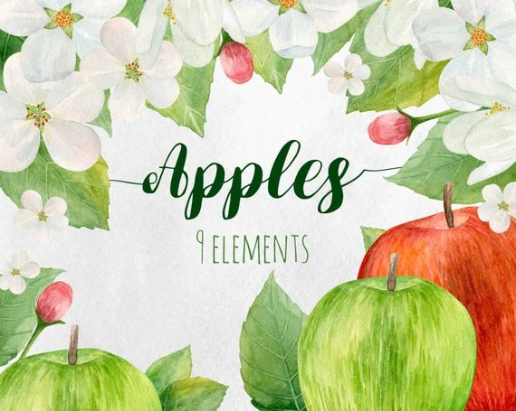 watercolor apple clip art fruits