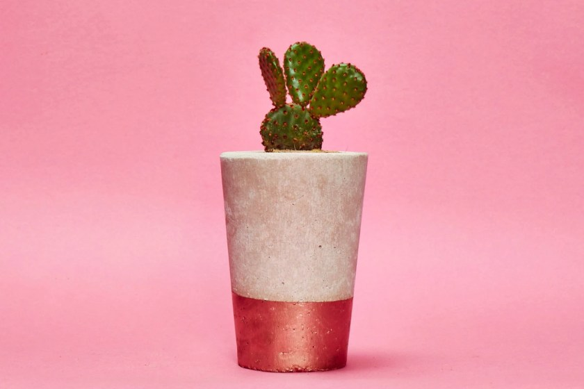 Concrete Planter, Cactus/ Succulent Plant Pot, Handmade, Copper Bronze, Tall Size- Includes Cactus or Succulent