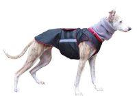 Extra Warm Winter Dog Coat Dog Jacket with snood