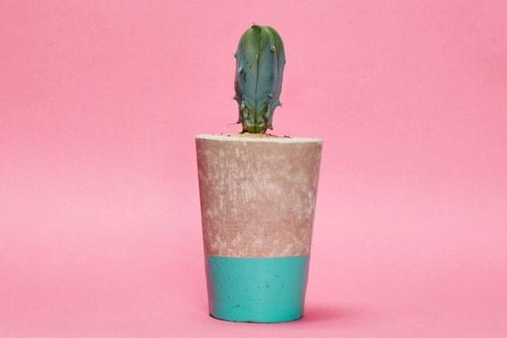 Concrete Planter, Cactus/ Succulent Plant Pot, Handmade, Turquoise, Tall Size- Includes Cactus or Succulent