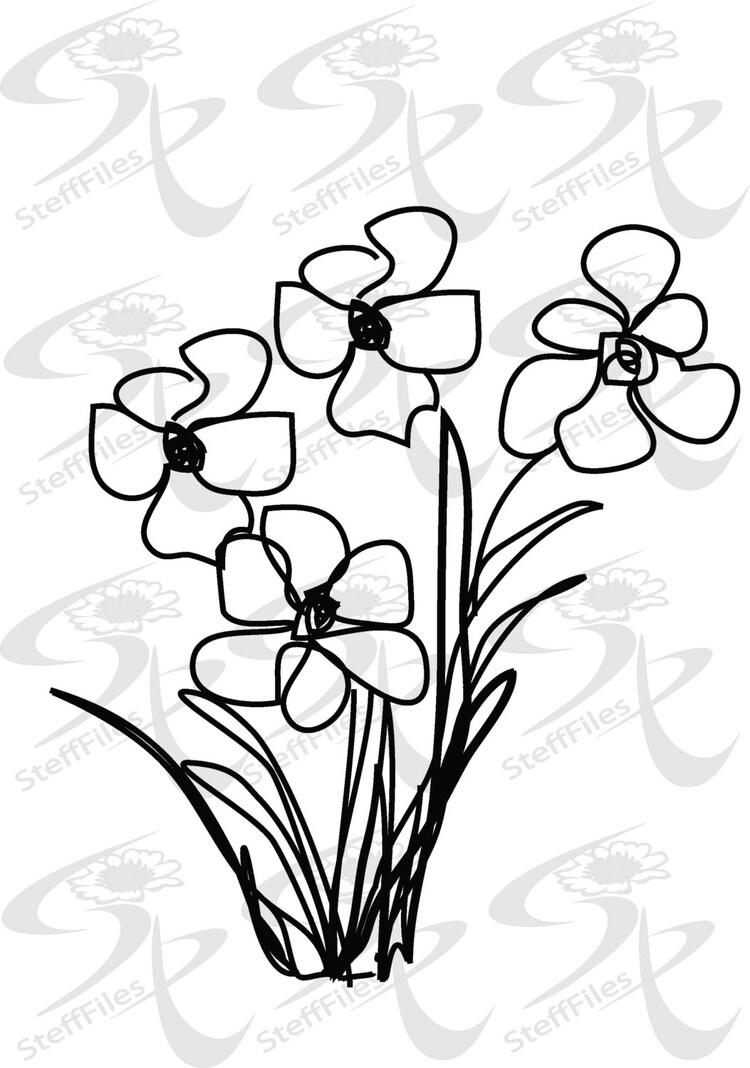 0225_ Vector_Narcissus flowers elite decoration by SteffFiles