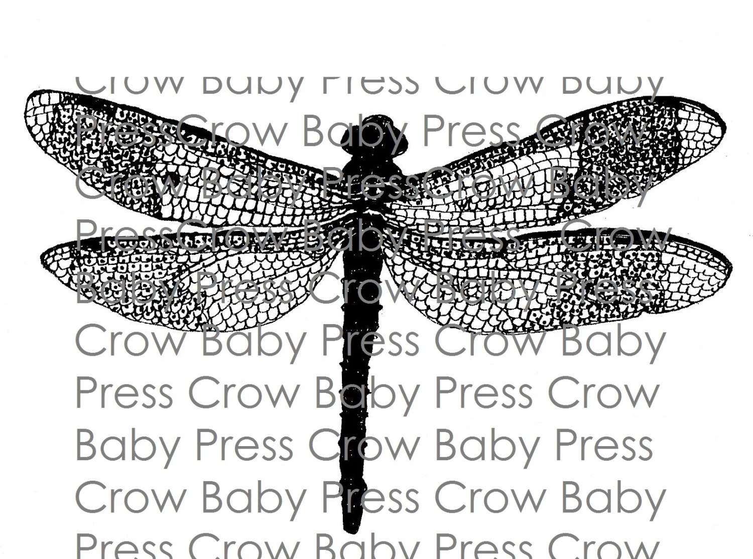Printable Dragonfly Drawing Instant Download Coloring Page