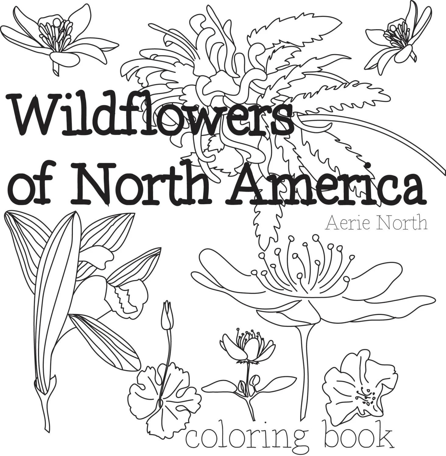 Coloring Book for Adults Wildflowers of North America PDF