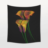Black And White Calla Lily Wall Art Pictures to Pin on ...