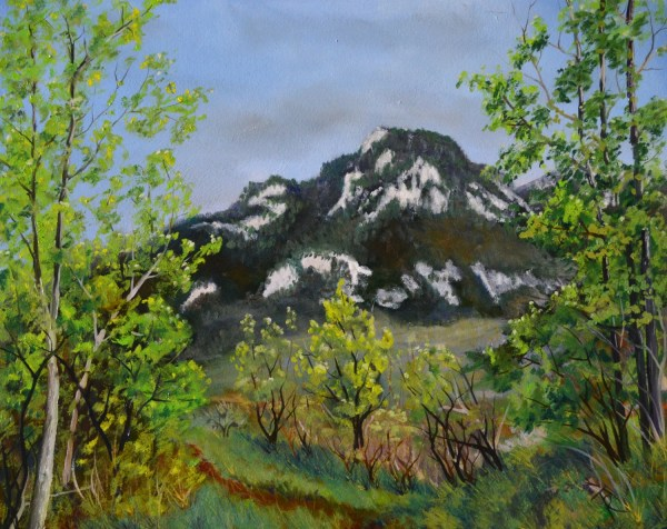 Original Oil Painting Fine Art Paintings Landscape