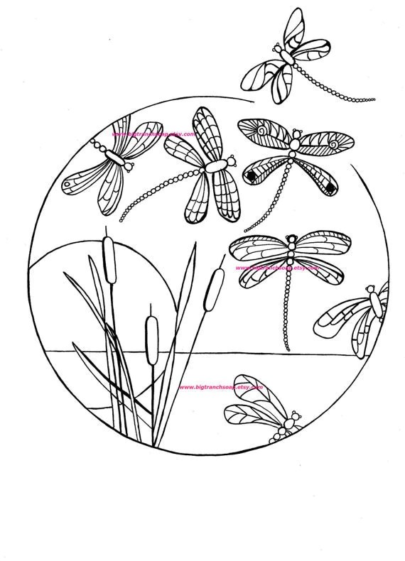 Adult Coloring Page Dragonflies Hand Drawn Image Digital