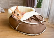 Unique Designer Pet Bed Medium Cat Small Dog