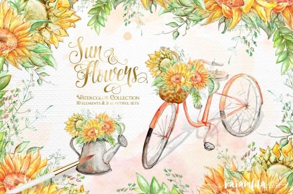 sunflower clipart watercolor floral